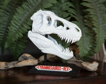 Dinosaur T, Rex Skull with Base & Nametag, High Quality, Great for kids and adults, 3D Printed, Halloween Gift