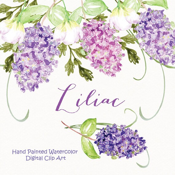 Watercolor Lilac Flowers Clipart Spring Flower Clipart Etsy