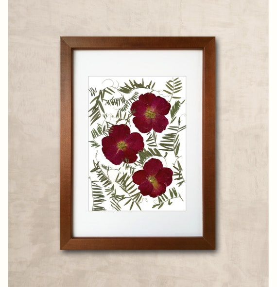 Pressed Flowers Wall Art Pressed Flowers Picture Rustic Decor Etsy