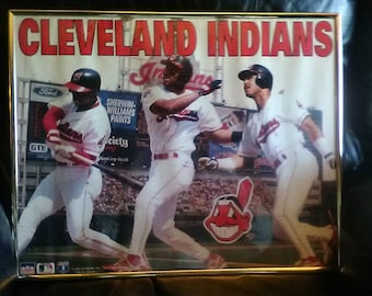 1995 Cleveland Indians 16x20 framed poster/World Series/American League Champs/MLB/Belle/Ramirez/Lofton/AL Centeal champs/Jacobs Field/