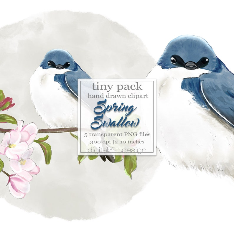 Blossom Spring Clipart Swallow Clip Art Watercolor Cherry image 0