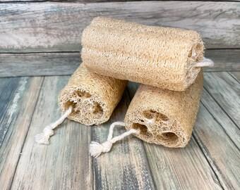 USA Made Set of 3 Organic LOOFAH Luffa loofahs SCRUB Gourd Squash Body Shower Sponge Exfoliating Scrubber Back Bath Dixie Cowboy