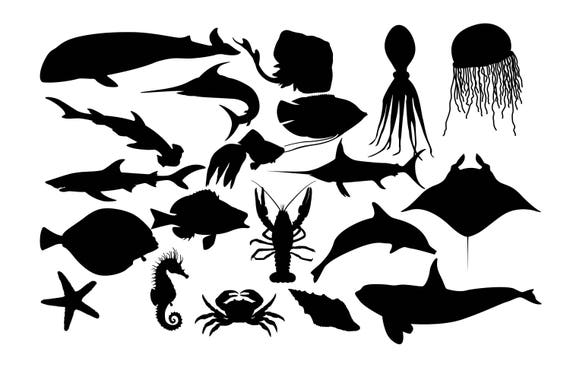 Coral Reef Fish Theme Collection 3 - Eps10 Vector Illustration. Royalty  Free Cliparts, Vectors, And Stock Illustration. Image 55738626.