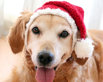 93b0a1cf06 Santa Hat for Dogs