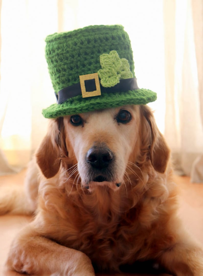 St. Patrick s Day Dog Hat Leprechaun Hat for Dogs  ae351ed6dd7a