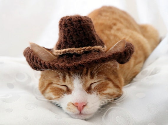 Cowboy Hat for Cats , Bandana Add On Option, Cowboy Halloween Costume for  Cats, Small Cowboy hat for Pets, Texas Country Western Cat Hat