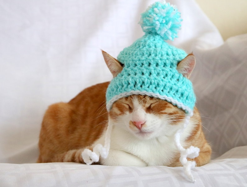 The Cat Beanie | Stay at Home Mum