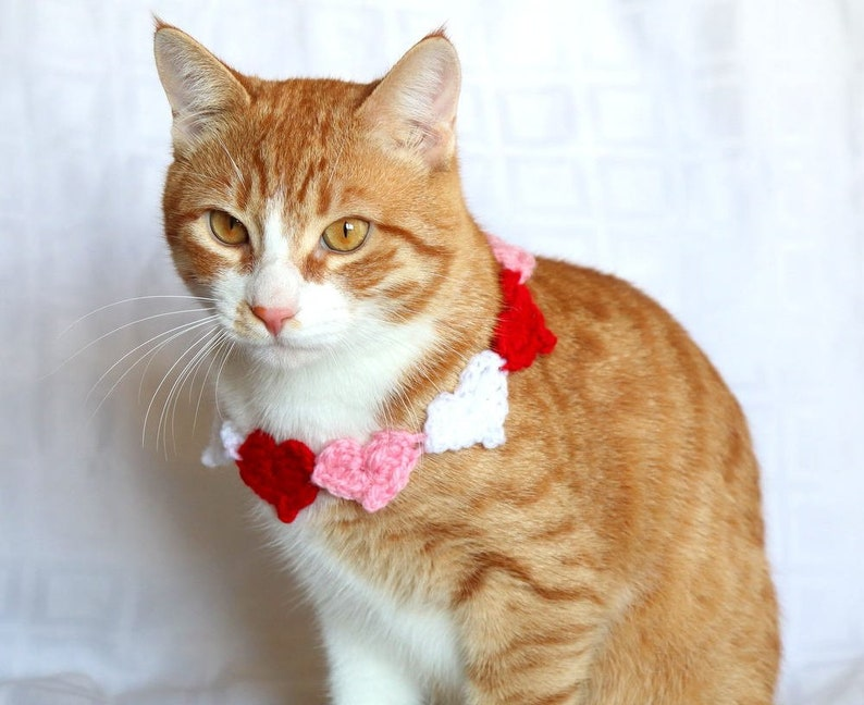 a5976832de86 Valentine's Day Cat Accessory, Heart Collar / Necklace for Cats,  Valentine's Day Cat Collar, Cute Cat Accessory, Cat Valentines Cat Apparel