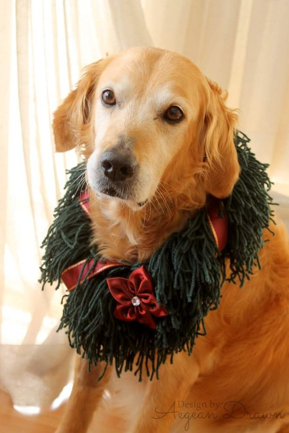 image 0 - Christmas Wreath For Dogs Dog Christmas Wreath Holiday Dog Etsy