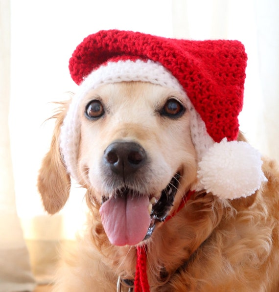 Christmas Hats For Dogs.Santa Dog Hat With Ear Holes Santa Hat For Large Dogs Golden Lab Pitbull Husky Boxer Christmas Dog Accessory