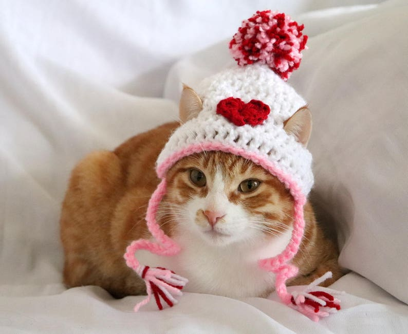 The Valentines Cat Beanie | Stay at Home Mum