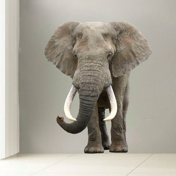 Elephant Wall Mural 3d Realistic Elephant Wall Decal Laptop