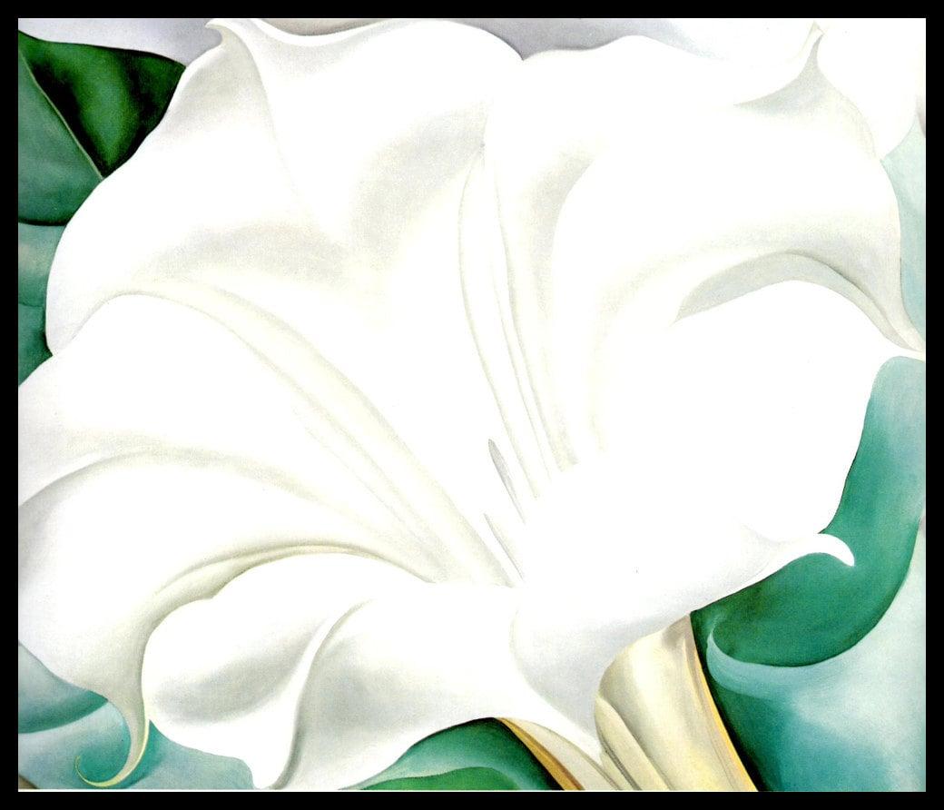 1932 Georgia Okeeffe Print The White Trumpet Flower Oil Etsy