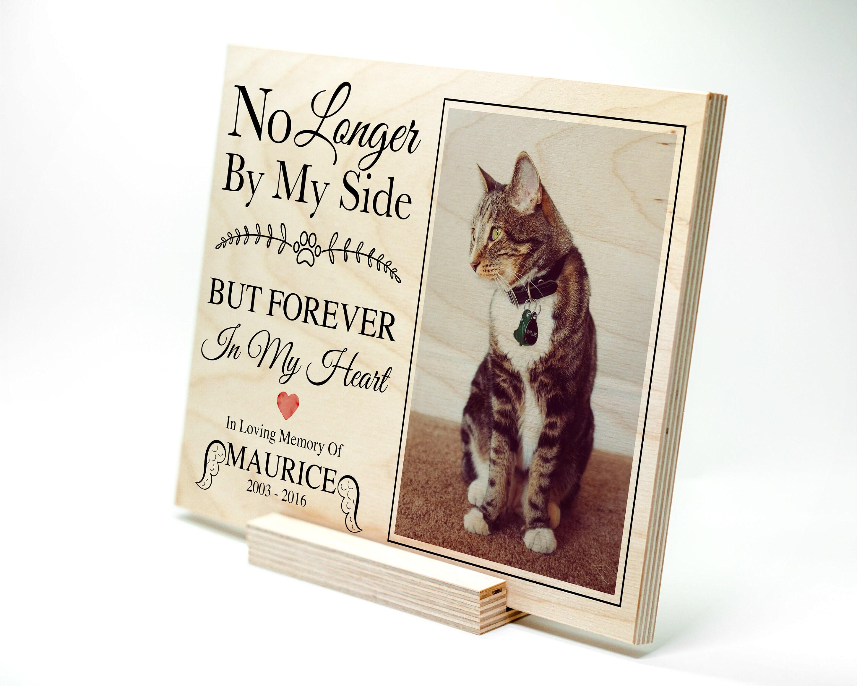 Großzügig Cat Memorial Picture Frames Zeitgenössisch - Rahmen Ideen ...