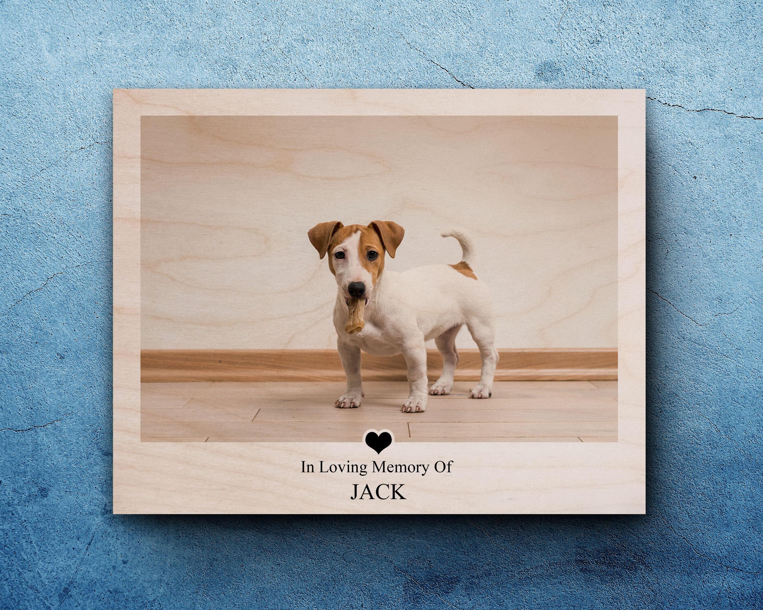 Pet Sympathy Pet Memorial Gifts Dog Loss Frame Pet | Etsy
