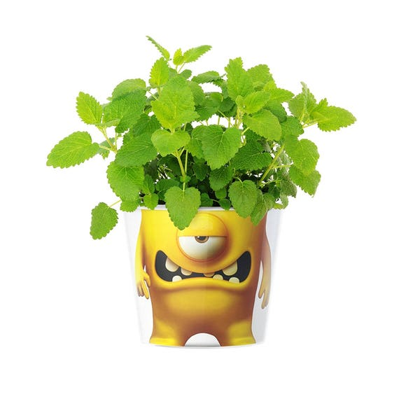 Plantmonsters Blumentopf O 16cm Kraut Monster Gelbe Deko Etsy