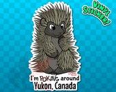 PORCUPINE STICKER | Porcupine Decal | Yukon Sticker | Yukon Decal | Yukon Territory | Yukon Canada | Canada sticker | Hedgehog Sticker