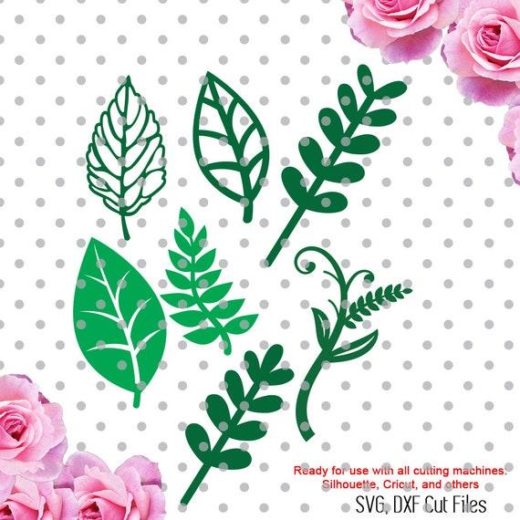 Leaves Svg Varied Leavs Svg Leaf Svg Cricut Leaves Svg Etsy