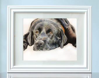 Custom Dog Portrait, Custom Pet Portrait, Dog Portrait, Pet Art