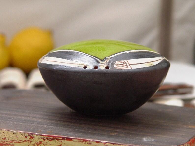 Danko Handmade and Hand Painted Pottery Accessories Unique Earthen Shaker Green Ceramic Salt Shaker Salt Box Pottery Pepper Shaker