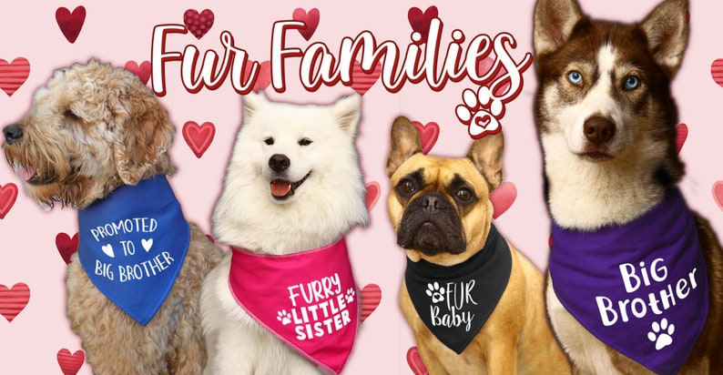Scarf Baby Shower Spoilt Rotten Pets /'Guard Dog/' Personalised With Any Date 4 Sizes 6 Colours Gender Reveal Dog or Cat Bandana Four Sizes
