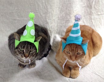 Birthday Party Hat For Cats ANY COLOR
