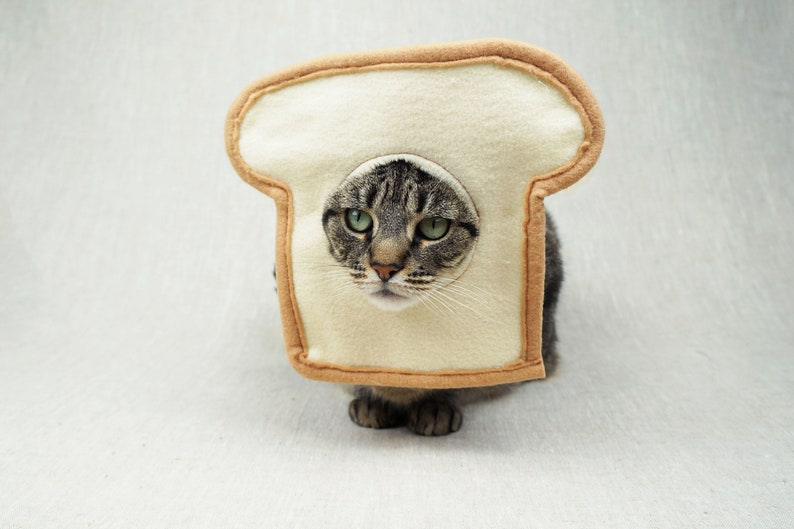 Bread Cat Costume for Cats image 0