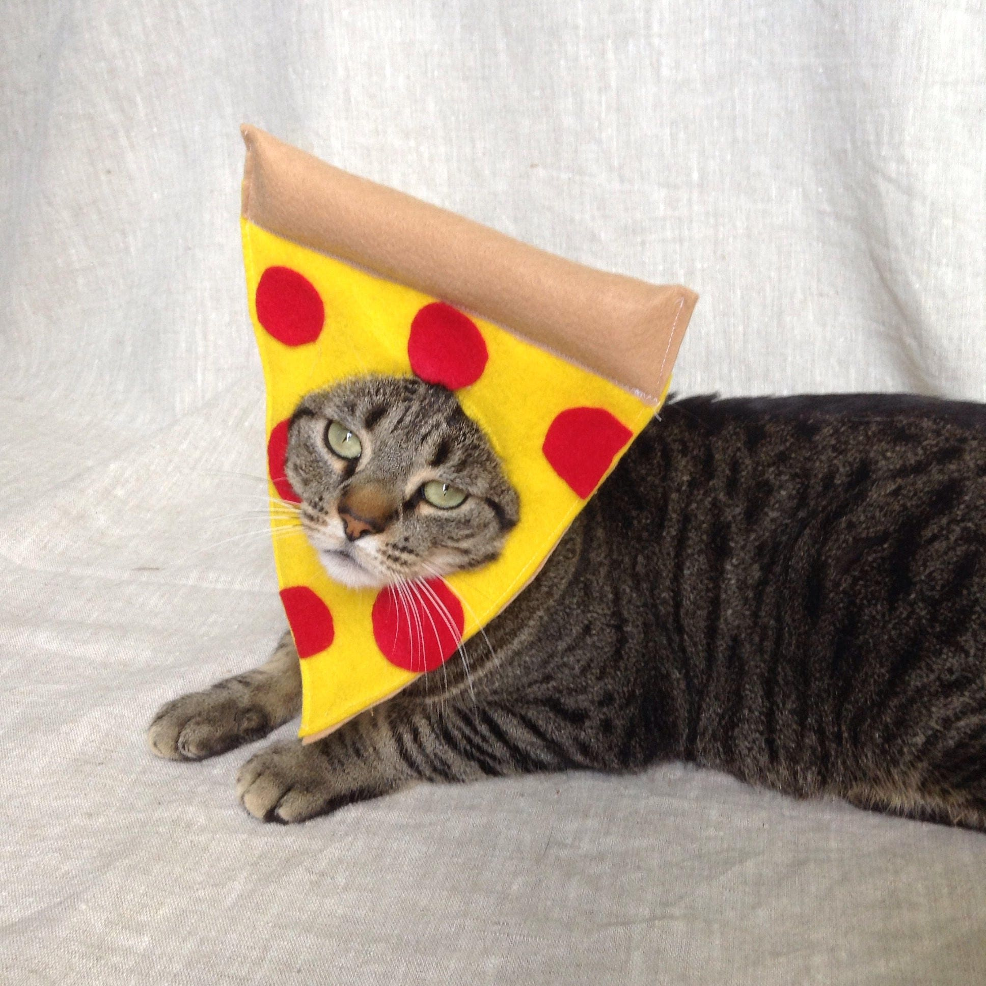 01265db0b885 Pepperoni Pizza Costume for Cats