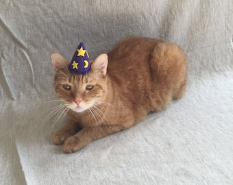 Wizard Hat For Kittens