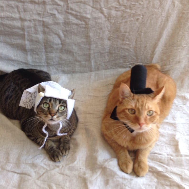 a7934eeeadf7 Bride and Groom Cat Costumes