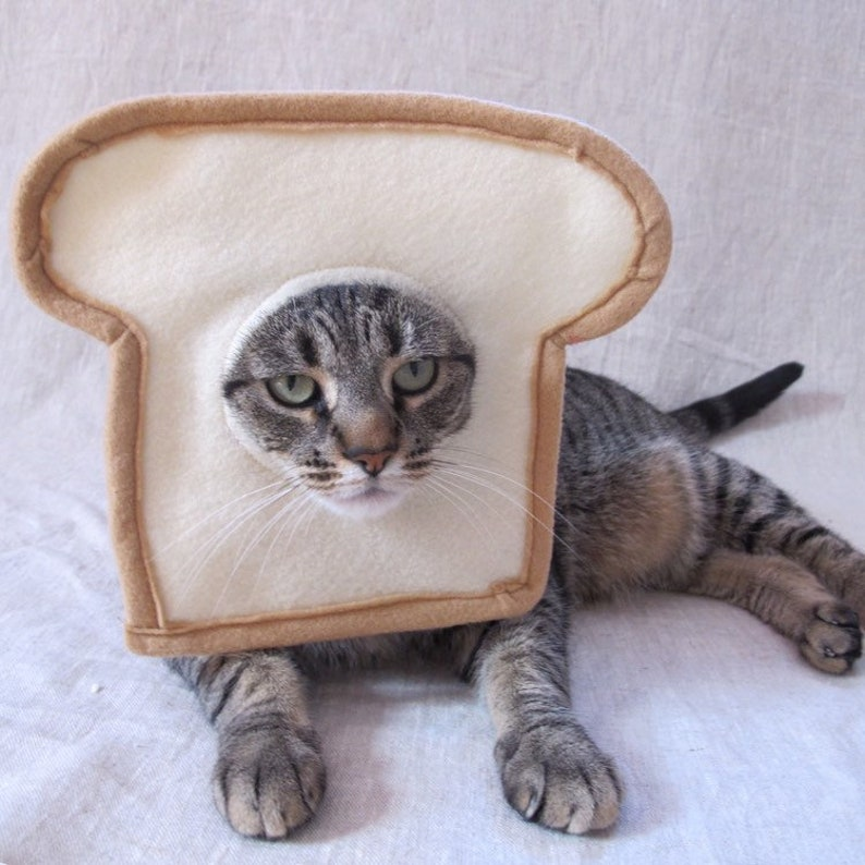 71b1267df Bread Cat Costume for Cats | Etsy