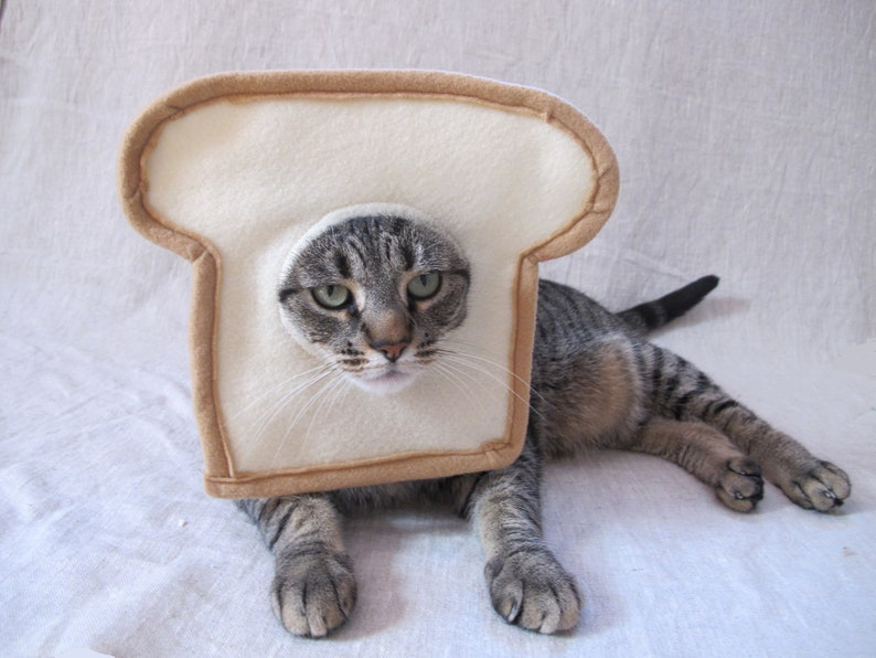 Bread Cat Costume for Cats  483f4caf3f