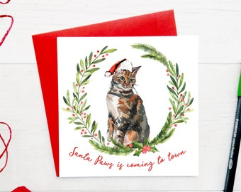 tabby cat christmas cards pack of christmas cards cat holiday card set cute christmas card set cat xmas cards christmas cards for friends