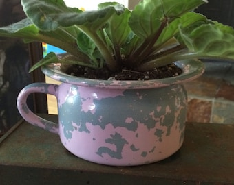 Vintage cup used as a planter pot