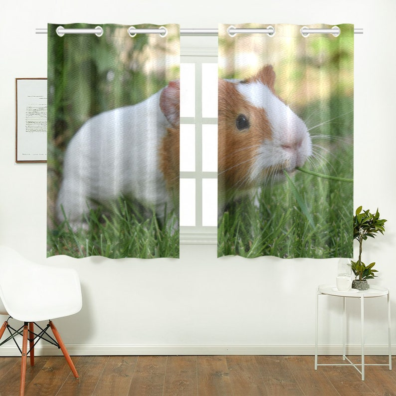 Curtain with Guinea Pig Pet Gift for Living Room or Kitchen