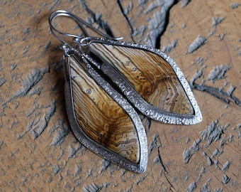 OOAK handcrafted fine silver Hells Canyon petrified wood cabochon earrings with open back and hypoallergenic stainless steel ear hooks