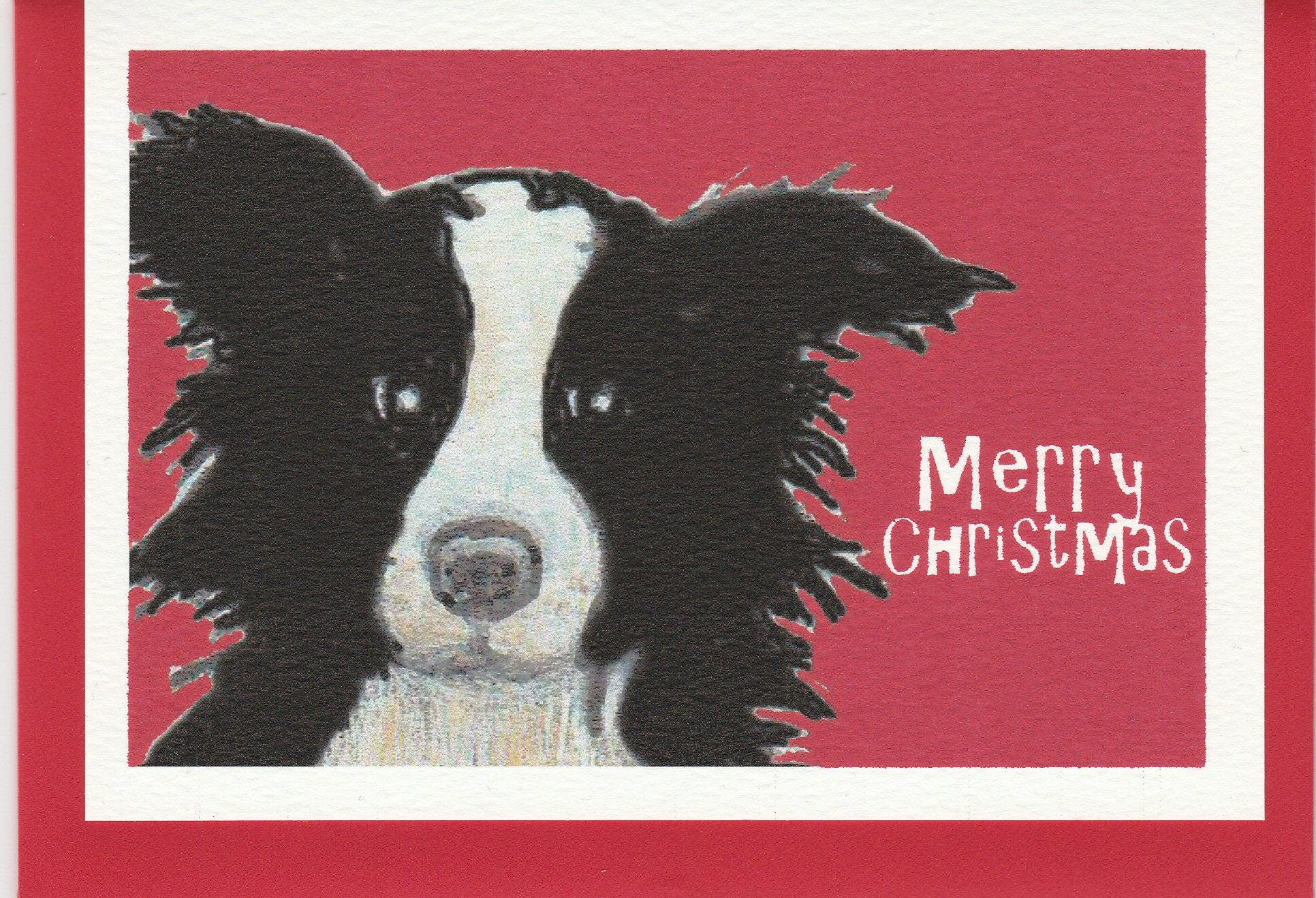 Border Collie Christmas card. card with a border collie. | Etsy