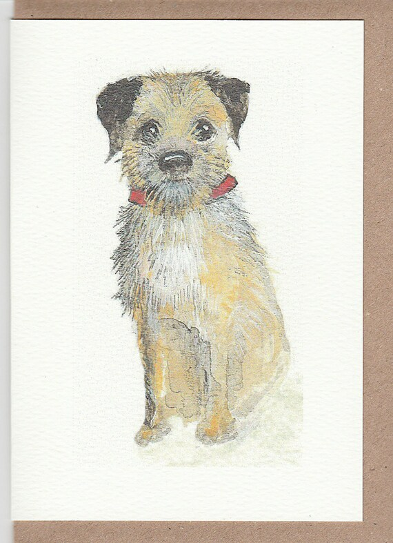 Norfolk Terrier Dog Blank Card Celebration Xmas Birthday Anniversary Thank You