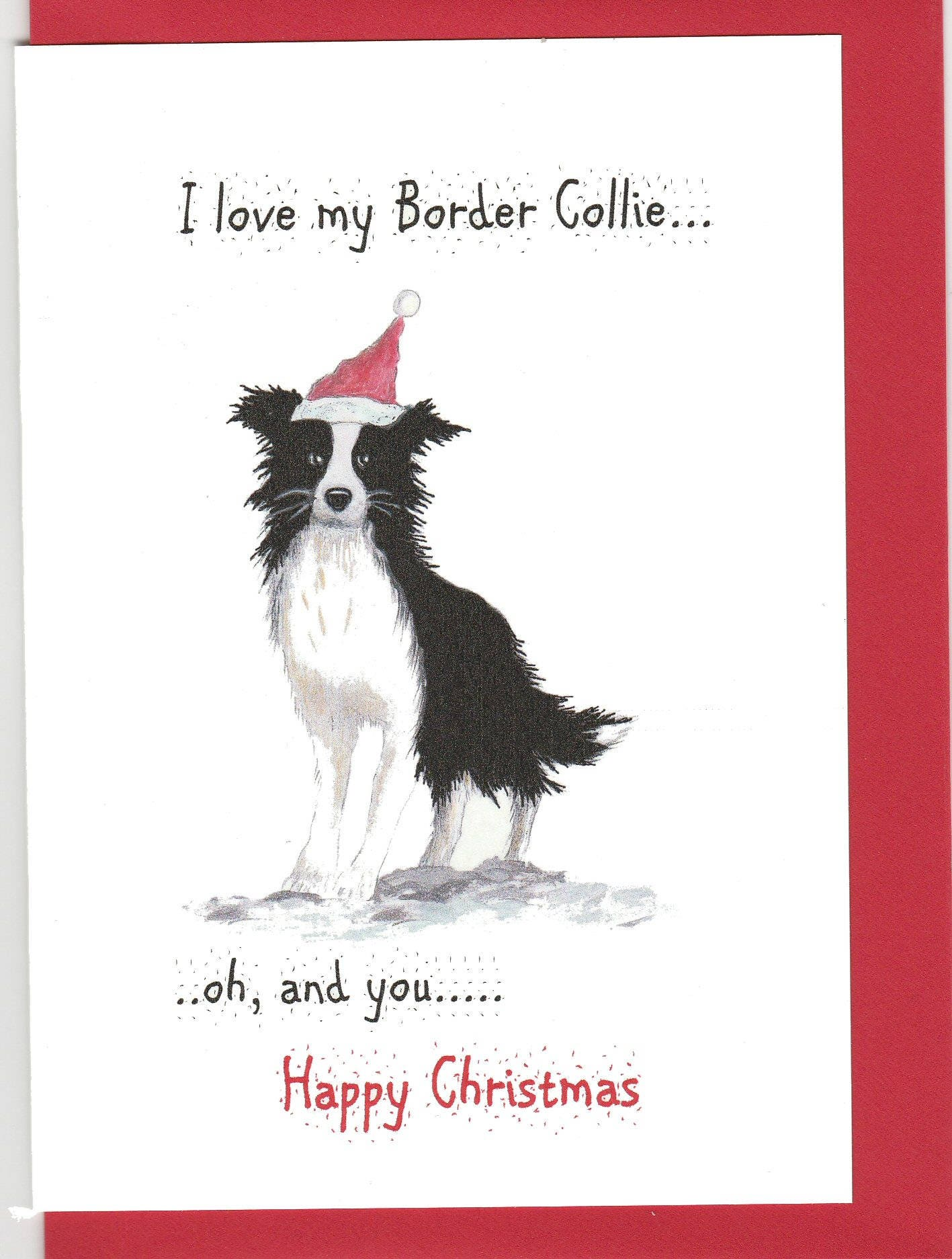 Border Collie Christmas card. Christmas card wit a border | Etsy