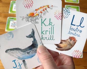 Jeu de mémoire abécédaire des animaux du Québec pour enfant lecture alphabet lettering du Canada fait au Quebec Cathy Faucher illustration