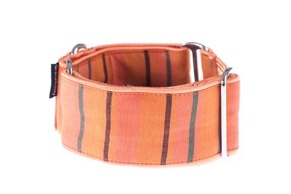 Collier martingale, 2 pouces, collier de lévrier, martingale, collier de chien