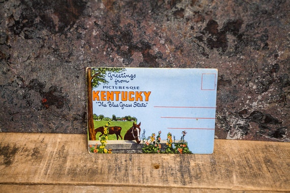 Vintage Picturesque Kentucky Souvenir Postcard Booklet Travel Souvenir Folder Postcard Fold Out Ephemera