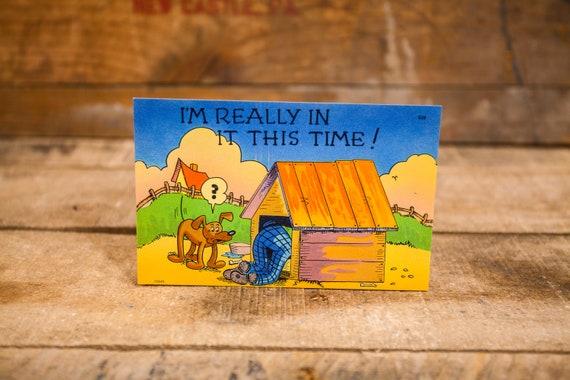 Vintage Comic Cartoon Postcard Novelty Humor Risque Cartoon Souvenir dog house