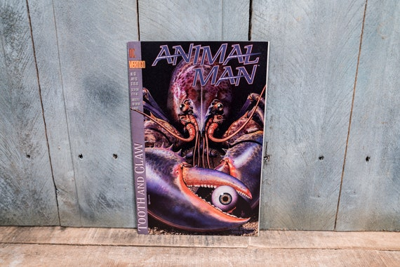 Vintage 1993 Animal Man #61 DC Vertigo Comic Book Modern Age Super Hero Comics