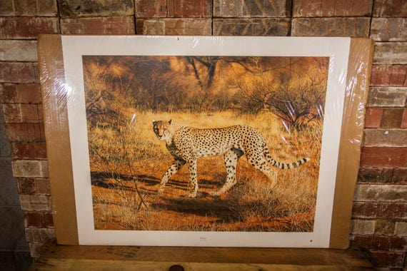 Vintage Charles Frace Cheetah Signed Limited Edition Print The Frame House Gallery Artwork Wildlife Nature Fine Art