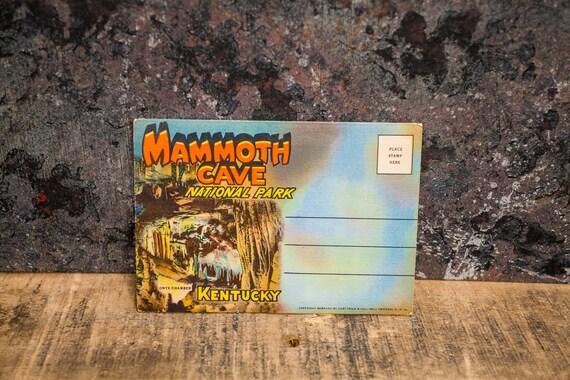 Vintage Mammoth Cave National Park Kentucky Souvenir Postcard Booklet Travel Souvenir Folder Postcard Fold Out Ephemera