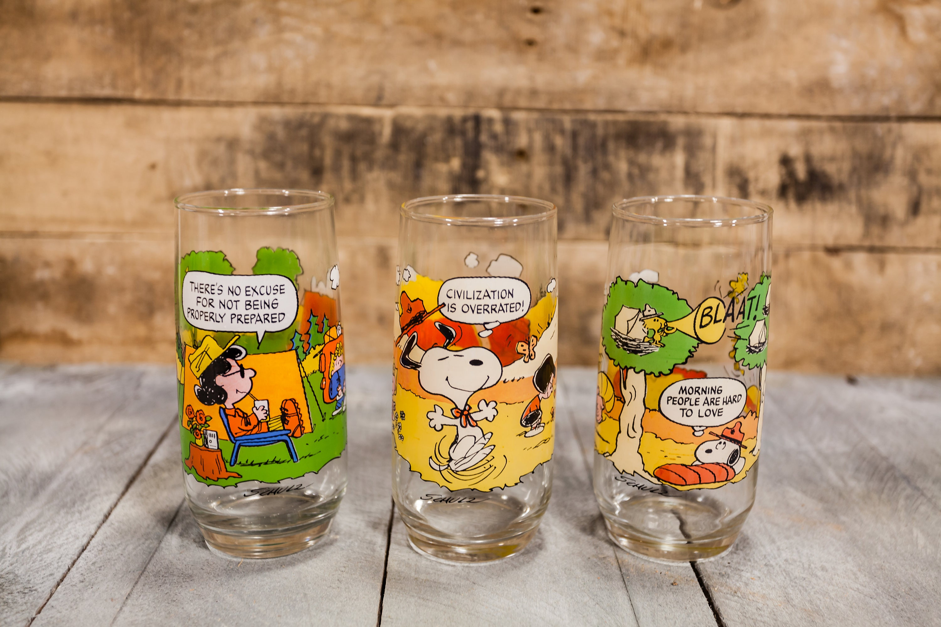 bbe2f365ed Vintage Charlie Brown Camp Snoopy Drinking Glasses