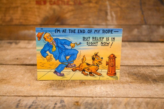 Vintage Comic Cartoon Postcard Novelty Humor Risque Cartoon Souvenir
