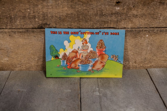 Vintage 1940s WWII Women's Army Corps Military Postcard Novelty Cartoon Souvenir Advertising NOS Beals Des Moines Iowa