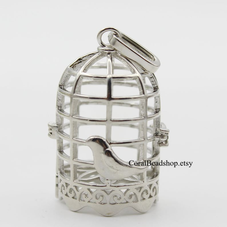 x063- 2pcs Hollow Bird Cage Pendant Locket Openable Cage Charms for  Essential Oil Diffuser Necklace Making